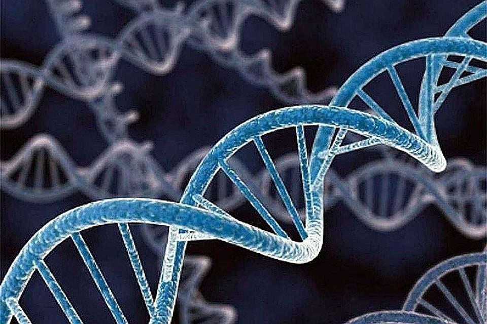 Резервное копирование ДНК