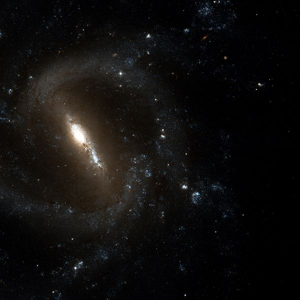 Галактика NGC-1073. Близнец Млечного пути. Автор: en:NASA, en:STScI, en:WikiSky