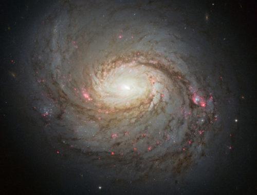 Спиральная галактика M77